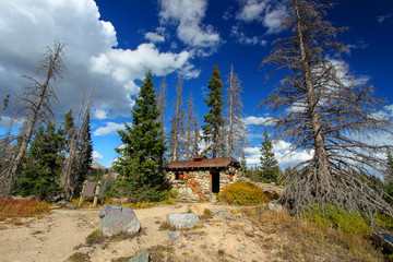 Wall Mural - Wyoming Mountain Forest Shack