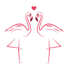 zwei pinke flamingos