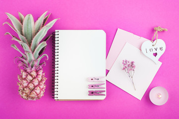 Pink pineapple, notebook on pink
