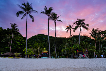 Beautiful natural landscape of coconut trees on the beach in front of Ko Wua Ta Lap island, under the colorful sky at sunset, Mu Ko Ang Thong National Marine Park, Surat Thani province, Thailand