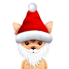 Funny Dog wearing Santa hat. Christmas concept