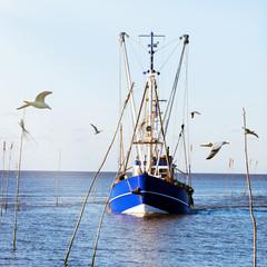 Krabbenkutter mit Möwen läuft ein in einen Kutterhafen an der Wurster Nordseeküste, Norddeutschland