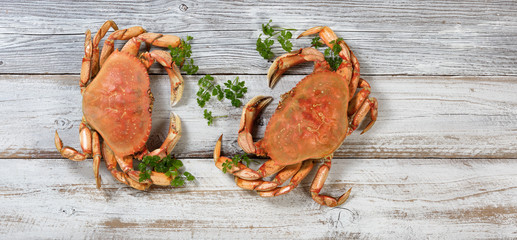 Two whole Dungeness Crabs