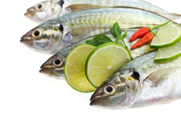 Fresh fish isolated on white background.