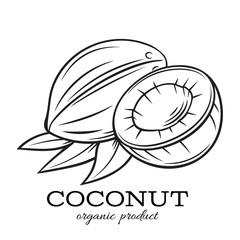 Hand drawn coconut icon.
