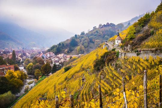 Alsace vineyards in autumn, Thann, France