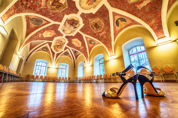Interior: a hall with beautiful paintings,  tango shoes in the foreground