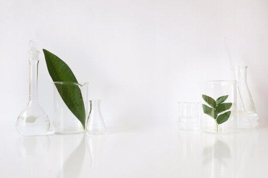Laboratory equipment for alternative medicine, science experimen