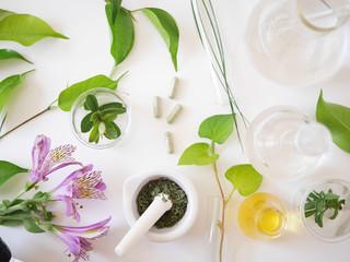 alternative medicine herb