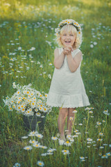 Cute young blond girl in white airy dress posing on daisy chamomile meadow with bouquet of flowers in hands basket metal bucket and wreath anademon top head smiling.