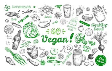 Go vegan. Healthy food. Vegetarian Big Set. Vector hand drawn isolated elements on white. Sketch style