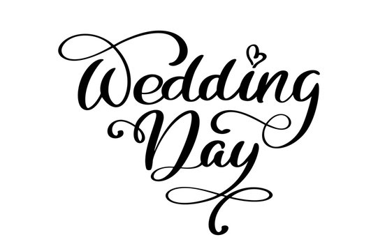 wedding day vector text on white background. Calligraphy lettering illustration
