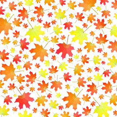 Vector background of autumn maple leaves