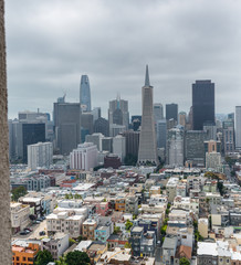 San Francisco skyline framed by Coit Tower Architecture