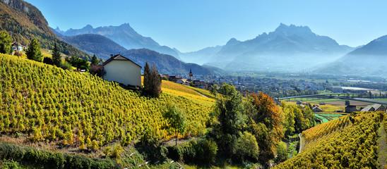panorama of autumn vineyards in Switzerland