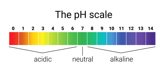 ph scale. infographic acid-base balance. scale for chemical analysis acid base.