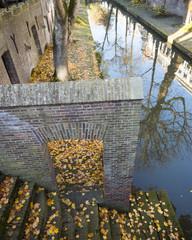 autumn leaves on nieuwe gracht in dutch town of utrecht in the netherlands