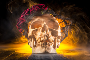Skull with smoke. Skull on a black background in smoke. Roses on the human skull.