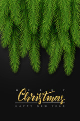 Background with realistic Christmas Tree Branches and Season Wishes. Vector illustration