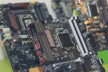Computer's motherboards are on the store counter. Electronics
