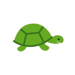 Turtle Vector Icon
