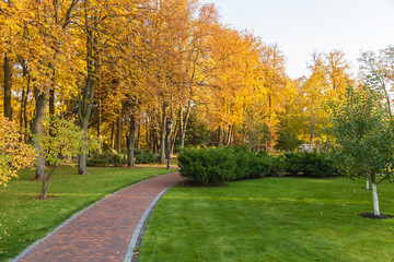 beautiful autumn park at sunny weather. a footpath in an autumn park