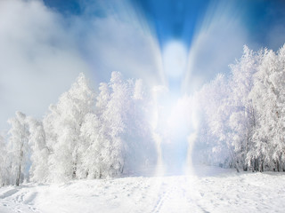 Beautiful winter landscape with an abstract angel in nature, the spirit of Christmas