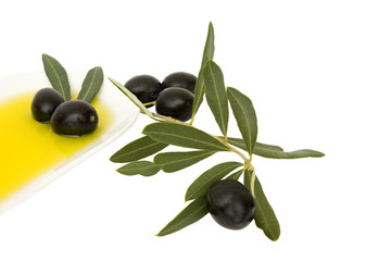 organic olive oil and black olives on a white background
