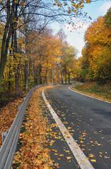 Autumn on the ECCE HOMO racing track, Sternberk, Czech Republic.