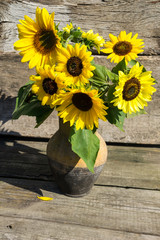 Sunflowers in vintage clay jug on wooden background