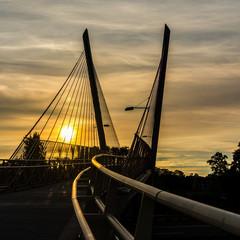 Delta Ponds Bridge 1