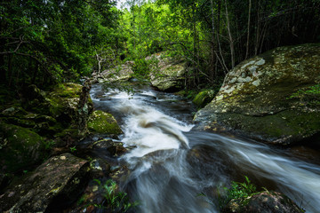 Waterfall with green moss in the tropical rainforest landscape
