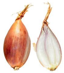 Unpeeled and cut in half Shallot onion bulb isolated on white background