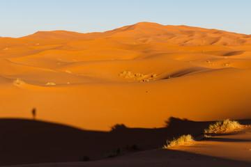 Marokkos Wüste