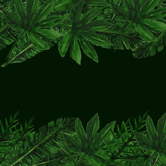 Tropical watercolor leaves frame with dark black space