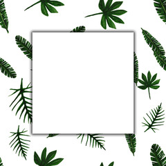 Tropical leaves frame with empty space