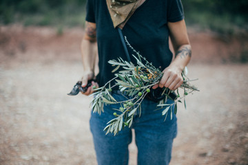 Young woman, professional florist or designer, holds branch of olive tree with leaves and fruits in her hand, and decorator scissors. Explores outside nature, adventurer and nomad life philosopher