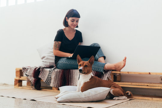 Cute freelance worker, or female pretty student works remotely from home on private or business projects, laptop mobile office, sits on bench in creative coworking space or hub, with puppy dog on lap