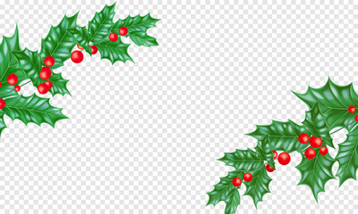 Christmas or New Year holiday background template of New Year fir or pine tree branch on transparent white. Vector Christmas or New Year holly leaf wreath ornament frame for greeting card design