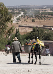 An old man leading his grocery laden donkey away from the weekly berber open market a short way from Essaouria in Morocco - Portrait