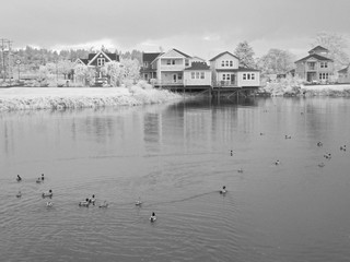 Infrared image of private homes around a pond in Astoria Oregon