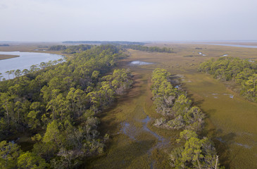 aerial view of coastal salt marsh and forest