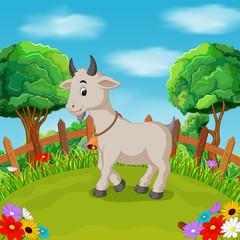 Cartoon happy goat smile in the farm