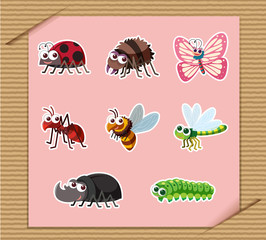 Sticker set of many types of insects