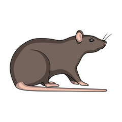 Rodent rat single icon in cartoon style for design.Pest Control Service vector symbol stock illustration web.