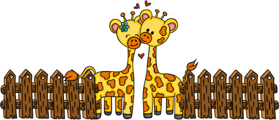Cute couple giraffe with wooden fence