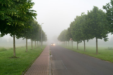 Highway in the early morning in the fog