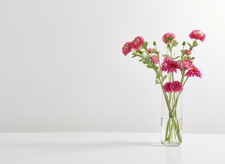 white wall vase of flowers white background