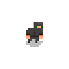 Pixel character ninja for games and web sites