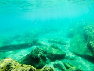 Bottom of clear blueSicilian sea